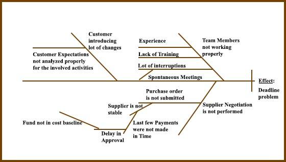 Cause and Effect Diagram- Fishbone Diagram Analysis