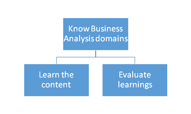 Business analysis domains