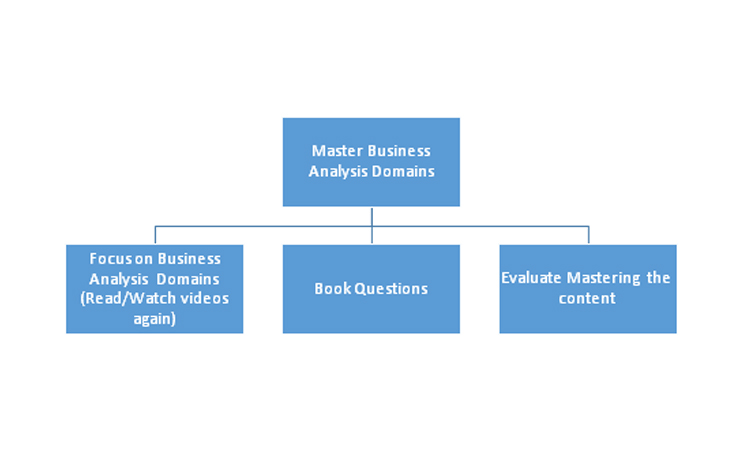 Master Business analysis domains