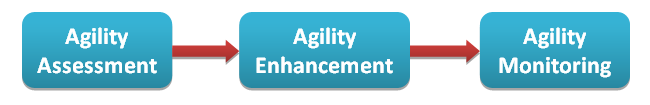 Monitoring Agility