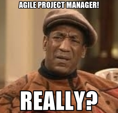 Agile project manager really