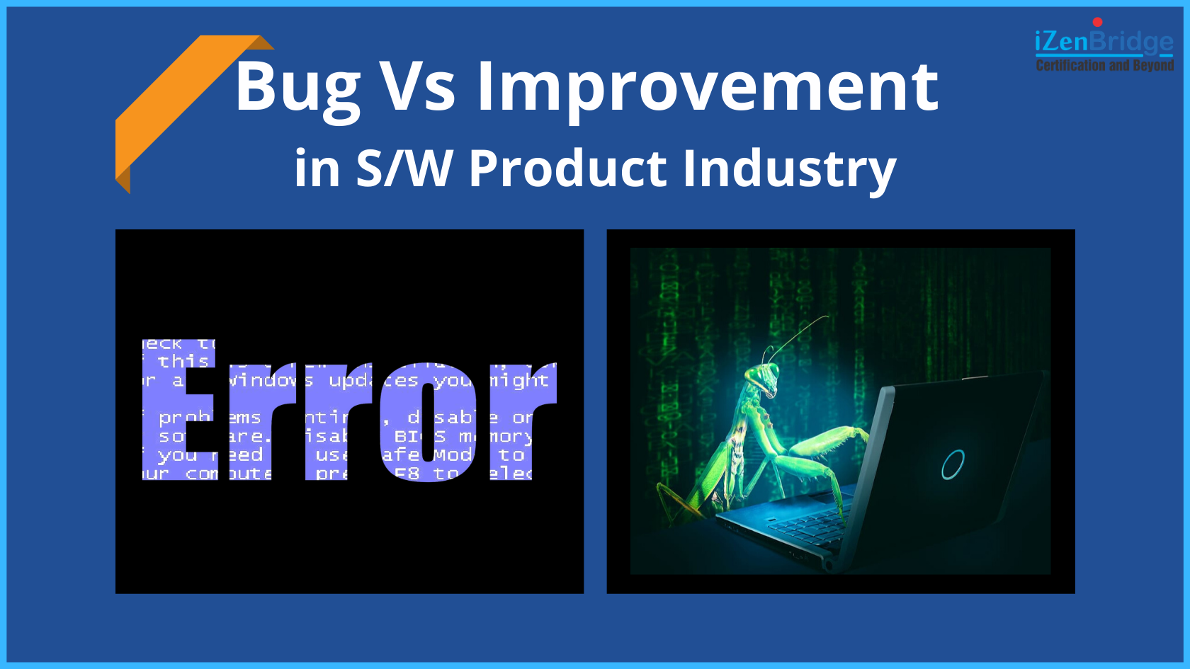 Bug Vs Improvement